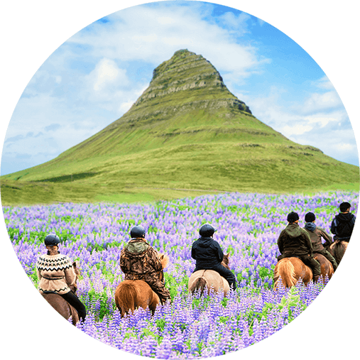 Travelers riding horses in Iceland