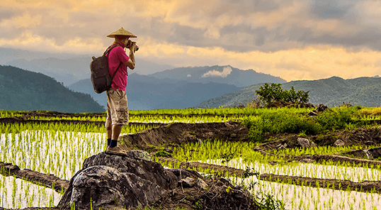 Man taking photo in rice paddy